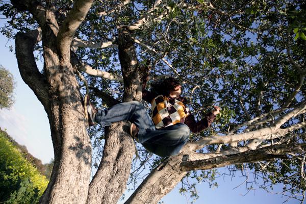 elena-on-tree